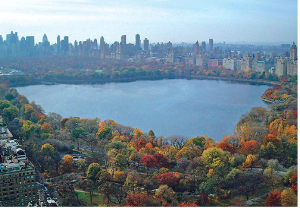 An overhead view of the Central Park Reservoir which hosts a 1.6 mile dirt running track.
